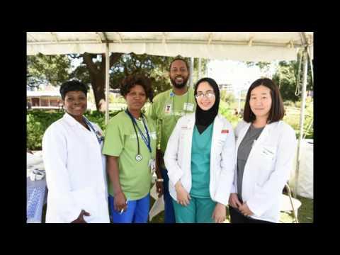 Houston Kidney Action Day - 2015