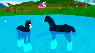 Baby Pegasus Foal & Friends - Horse Heart Let's Play Online Roblox Horses Game