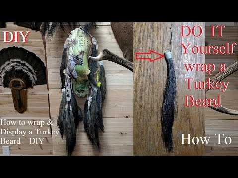 Turkey taxidermy how to wrap display a turkey beard do it yourself turkey taxidermy how to wrap display a turkey beard do it yourself solutioingenieria Image collections