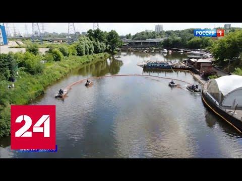 Грачевка в цветах радуги: Росприроднадзор нашел источник загрязнения - Россия 24