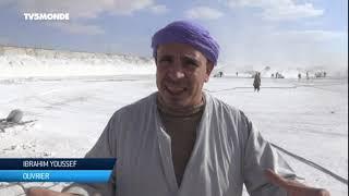 Égypte - L'enfer des ouvriers d'une mine de calcaire à l'est du Nil