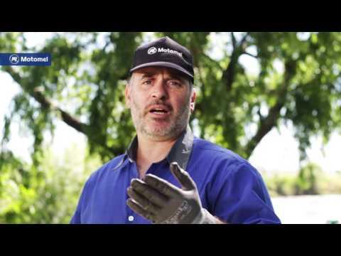 Máquinas Y Herramientas Motomel – Podadora De Altura Mpa 26
