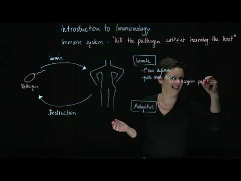 Brandl's Basics: Introduction to Immunology (1/3) - The Basics