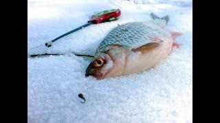 Супер рыбалка по последнему льду