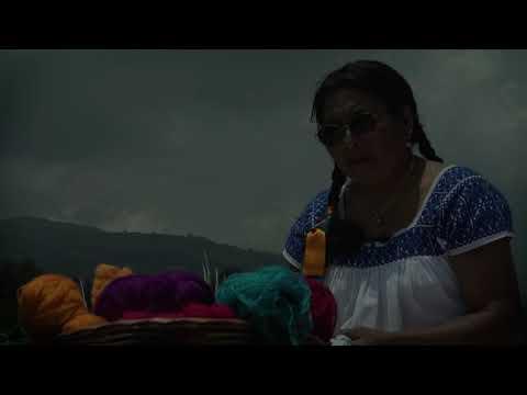 2019 Año Internacional de las Lenguas Indígenas - Bordado Hilvanado, Micaela Flores de la Cruz