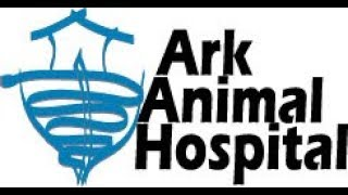 Ark Animal Hospital Wellness Plan