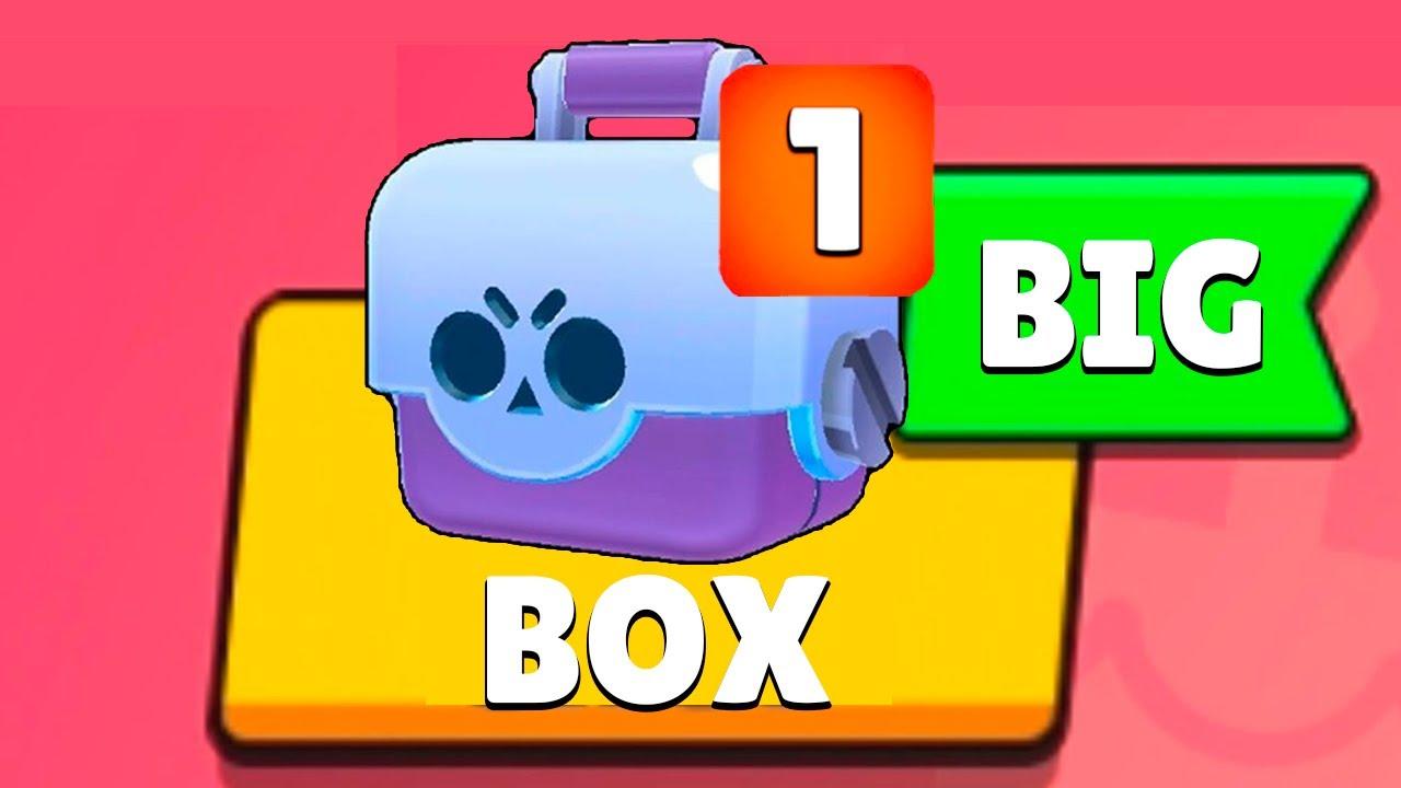 BIG BOX in a nutshell! 🥑