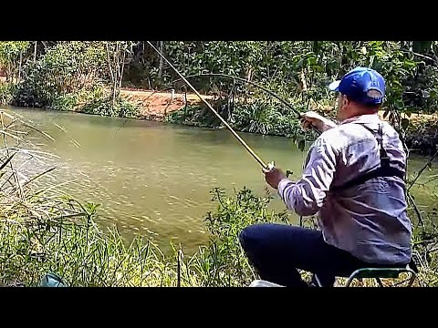 Pesca De Tilápia SÓ FISGADA BRUTA!!!