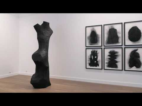 Exposition David Nash-Galerie Lelong Paris