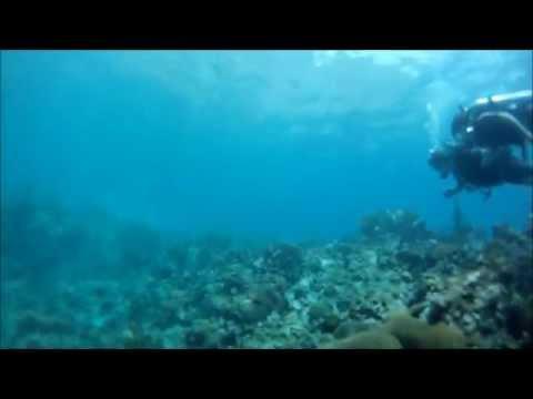 Marine Reserve St-Lucia
