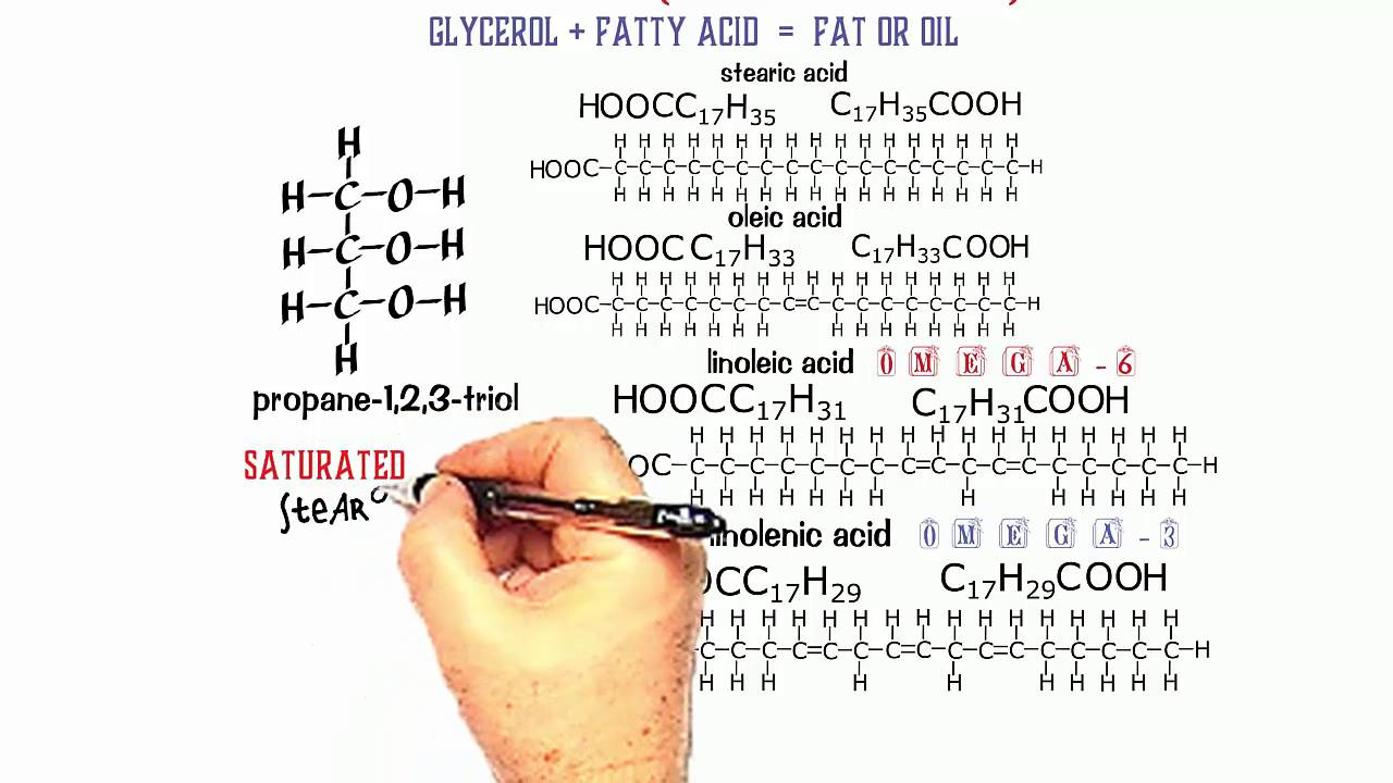 Esters 3 structure of fats and oils youtube structure of fats and oils pooptronica