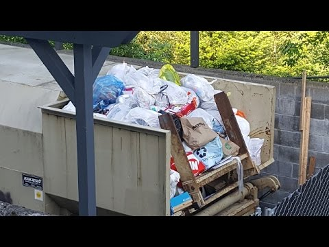 Is Valet Waste dumping recycling?