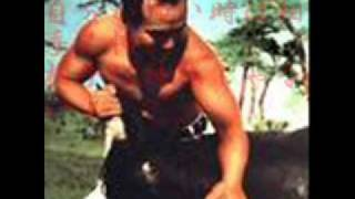 ケンカ空手・実践空手で有名な極真会の創設者。 ゴッドハンド・大山倍達...