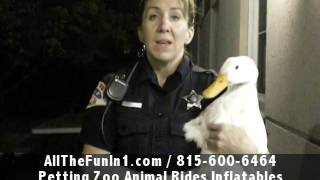 Call 815-600-6464-Animal Rental,Animal Rentals,Animal Rental Chicago,Animal Rentals Chicago Area 4