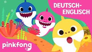 Wo ist Papa Hai? | Englisch Lernen | Baby Hai | Tierlieder | Deutsch | Pinkfong Lieder für Kinder