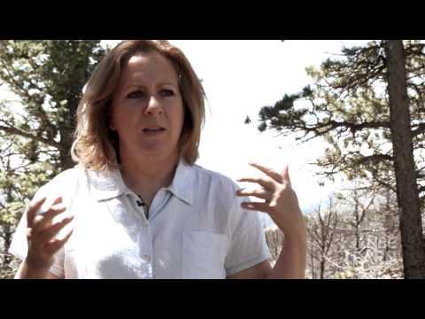 When Nature Strikes - Wildfires