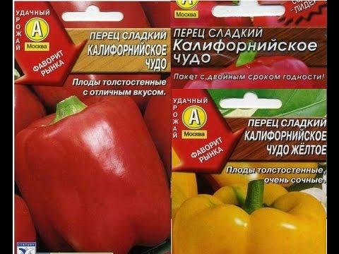 Перец - Семена для сибири