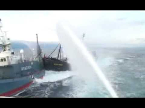 Sea Shepherd rams Japanese whaling ship