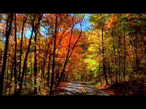 Take a drive through Arkansas's signature fall foliage