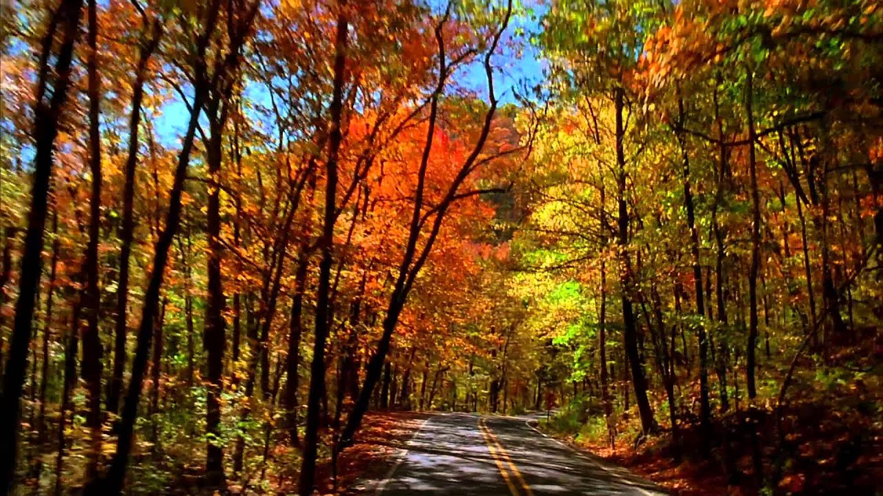 Free Country Fall Wallpaper Take A Drive Through Arkansas S Signature Fall Foliage