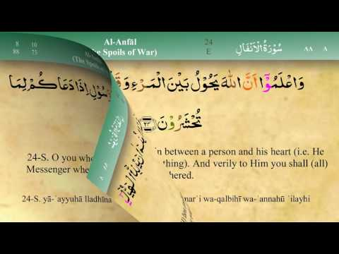 008 Surah Al Anfal with Tajweed by Mishary Al Afasy (iRecite)