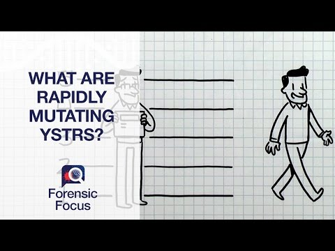 What are Rapidly Mutating YSTRs? - Forensic Focus #3