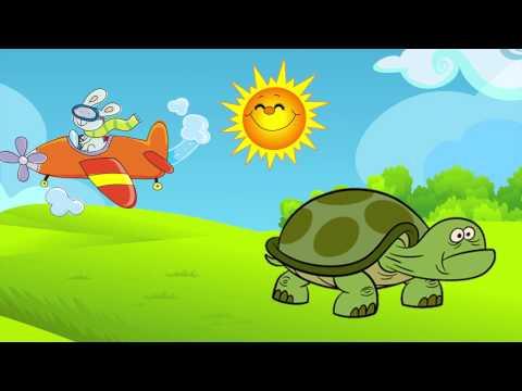 La Tortuguiita - Canciones Infantiles -  DIDACTICA PARA NIÑOS