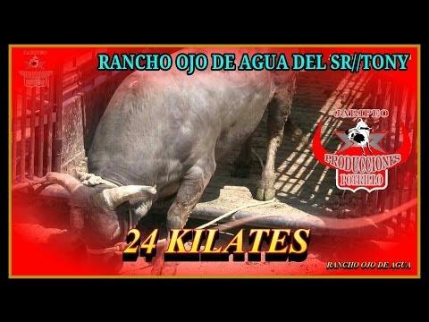 RANCHO OJO DE AGUA EN SOUTH BEND INDIANA//24/5/2014//1080 HD