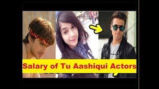 "Per Episode Salary Of ""Tu Aashiqui"" Actors 2017"