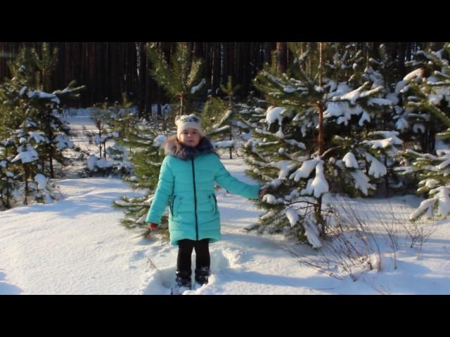 Изображение предпросмотра прочтения – ВалерияМалюгина читает произведение «Мороз, Красный нос» Н.А.Некрасова