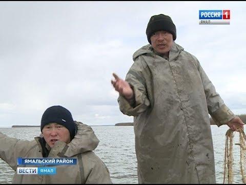 Защитники биоресурсов вышли в патруль Ямальского и Приуральского районов