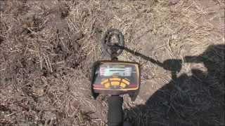 Коп на пшеничном поле август 2015 (Garret ACE250)