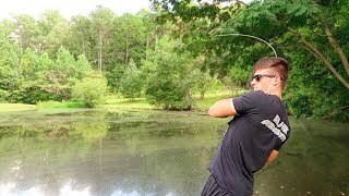 How To Fish Smąll Ponds - Bass Fishing Tips
