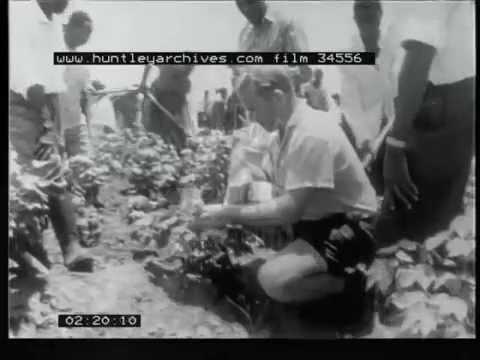 Tanganyika, 1960's - Film 34556