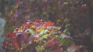 Mono36 в стихах - Только вверх из низов ( 12 выпуск )