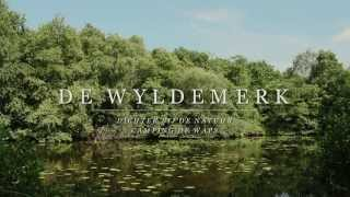 De Wyldemerk: achtertuin van Camping De Waps
