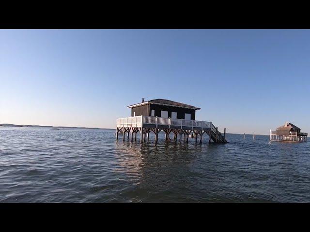 Ile aux oiseaux, Excursions sur le Bassin Arcachon : Les Cabanes Tchanquées à marée Haute HD