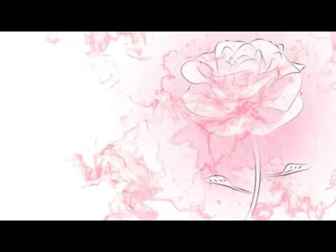 Rotoscope Rose Animation
