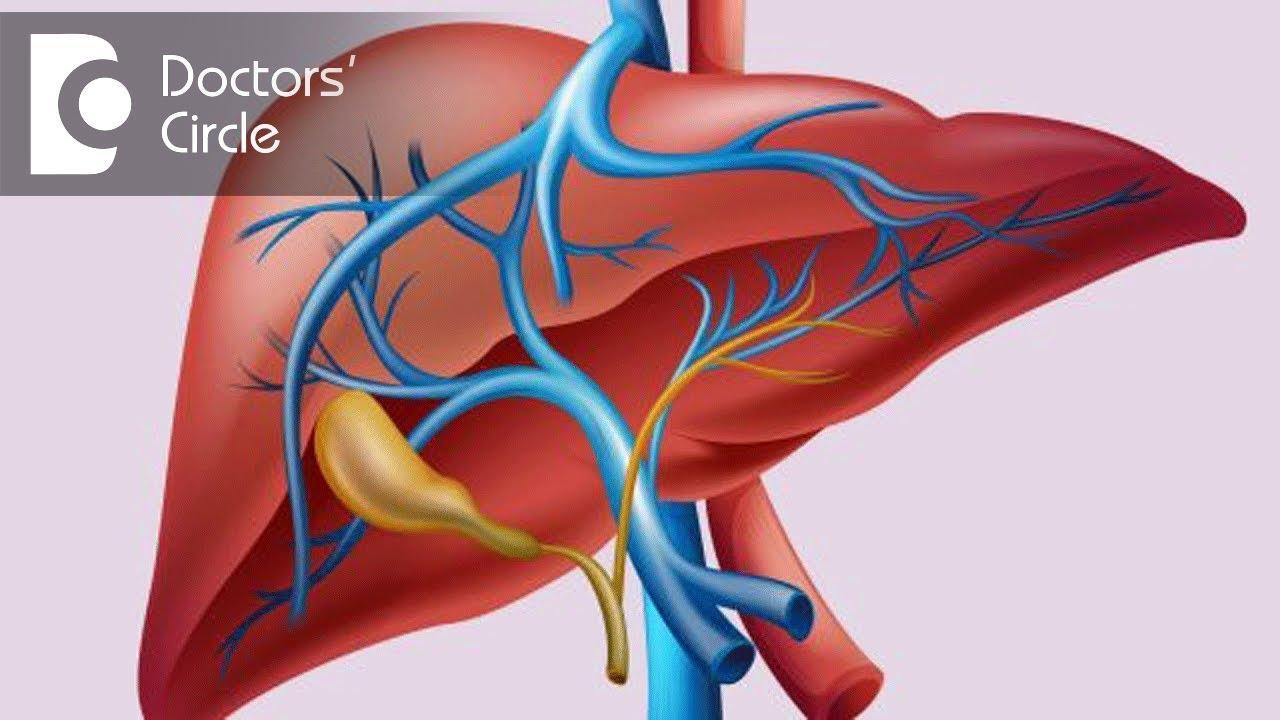 Ayurveda Treatment for Liver   Dr Mini Nair   AyurHealing