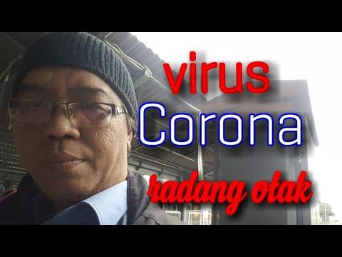 CORONAVIRUS RADANG OTAK - ENCEPHALITIS @KOMPASTV (2020) AKUPUNTUR LAPINSAM BEKASI
