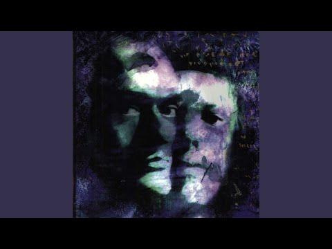 Das Ich Im Ich Remixed  Steve Naghavi Of And One