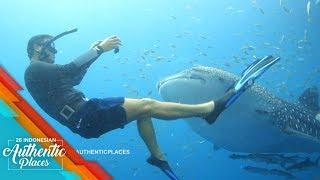 Hamish Daud Berenang Dengan Hiu Paus di Kalimantan  - 26 Indonesian Authentic Places (10/10)