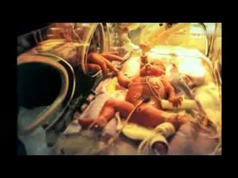 Mönche im Labor - Die Neurowissenschaften entdecken die fernöstliche Meditation (ArteDoku 2007)
