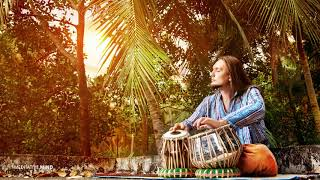 Hang Drum + Tabla || Pure Positive Energy Meditation Music || Namaste Music, Yoga Music