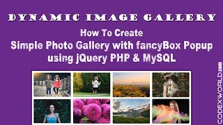 Create Dynamic Image Gallery with jQuery, PHP, and MySQL