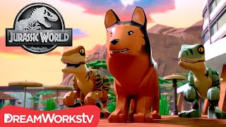 Red to the Rescue | LEGO JURASSIC WORLD: LEGEND OF ISLA NUBLAR