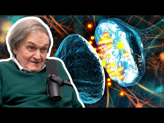 Consciousness is Not a Computation (Roger Penrose) | AI Podcast Clips