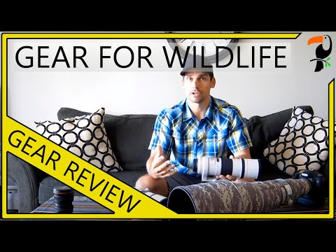 Photography Equipment - The Best Equipment For Wildlife Photography