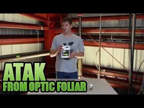 Atak from Optic Foliar | Get Rid of Powder Mold in Garden | PM Cure Safe & Natural
