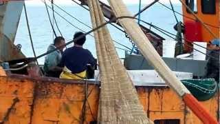 pesca en rawson